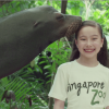 Singapore Zoo Conservation Billboards TVC